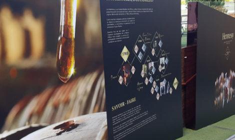 Hennessy & LVMCH